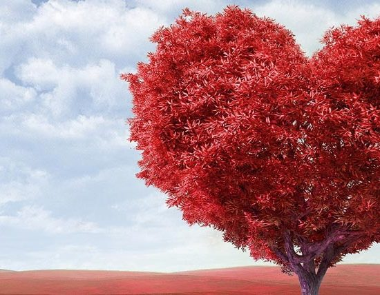 7 Feng Shui tips to attract more love into your life